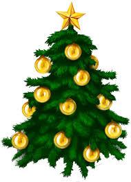Kerstboom Nspoh